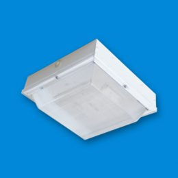 CSC LED, LED Compact Canopy, LED lighting fixture