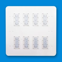 WDL LED Walk-On Ceiling Option